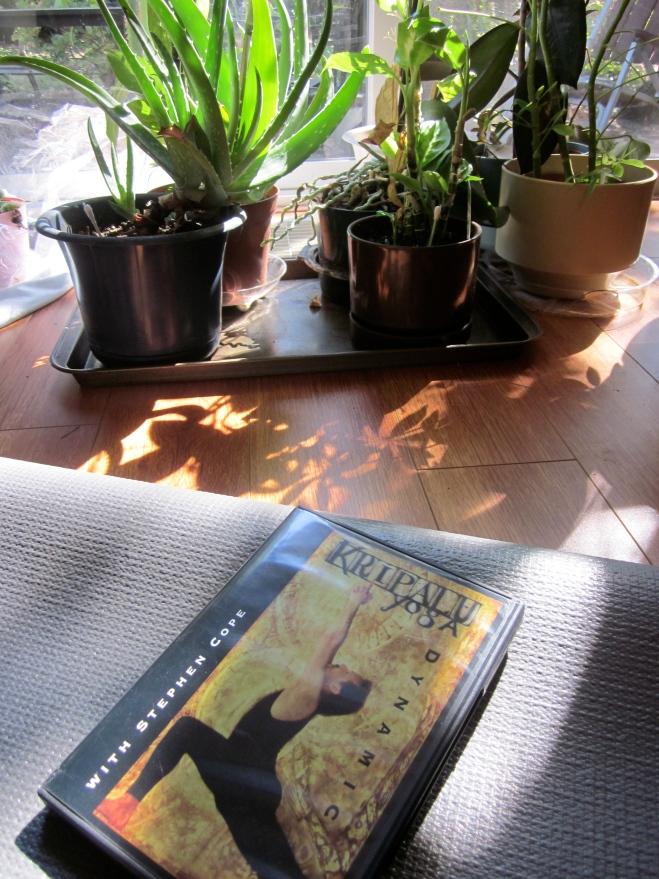Kripalu yoga DVD