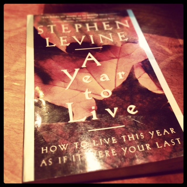 Stephen Levine - A Year to Live