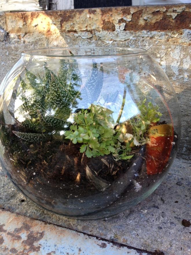 DIY Terrarium: Soil