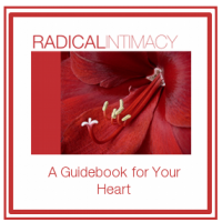 Radical Intimacy EBOOK