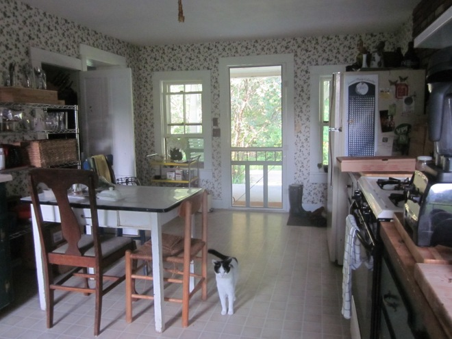 Kitchen from backdoor