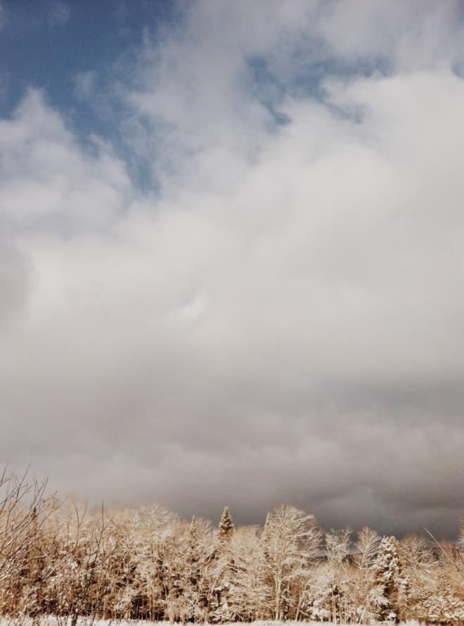 NEK Winter