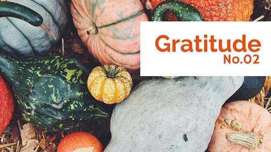 Gratitude No.02